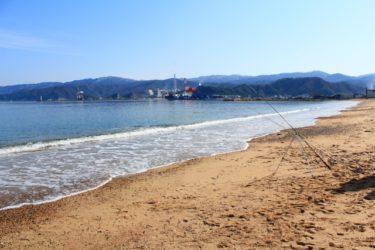 2019年に福井県でヤリマンボウが多数座礁した話題がAERA.dotに掲載