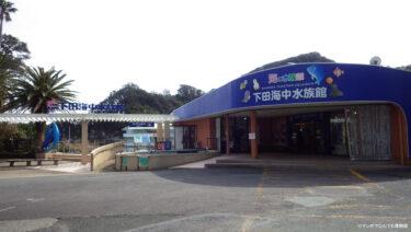 【マンボウがいる水族館】下田海中水族館レポート